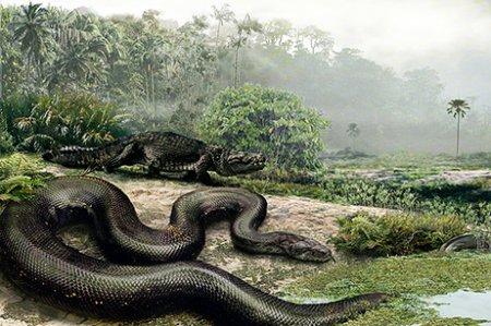 Найдена самая большая змея в мире